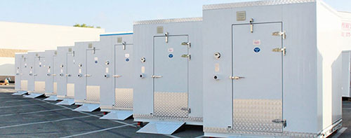 Polar Bear Box Freezers and Coolers - Vaccine Storage and Transport